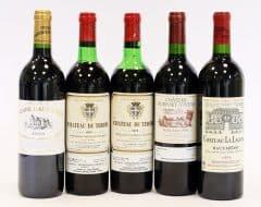 Bordeaux Selection (5 bottles)